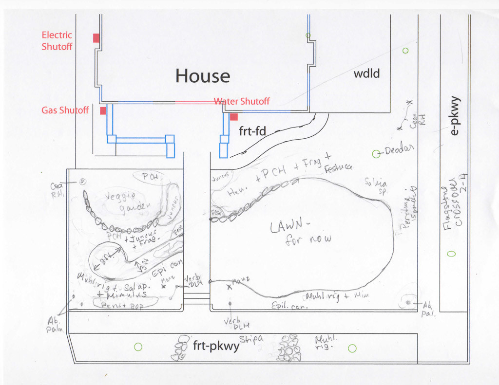 Plans for edible garden with native plants in front yard.