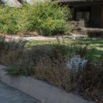 Front yard border garden