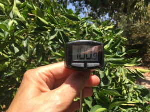 Meat thermometer measurements